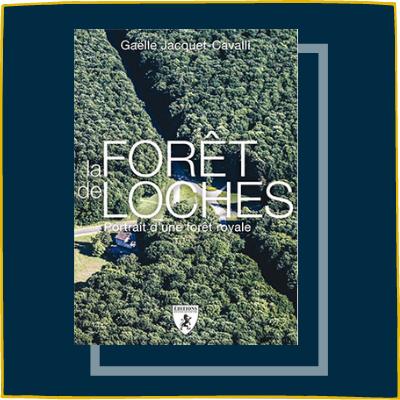 La forêt de Loches
